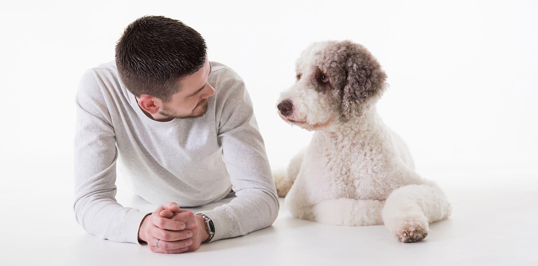 fotoshoot met honden in de fotostudio
