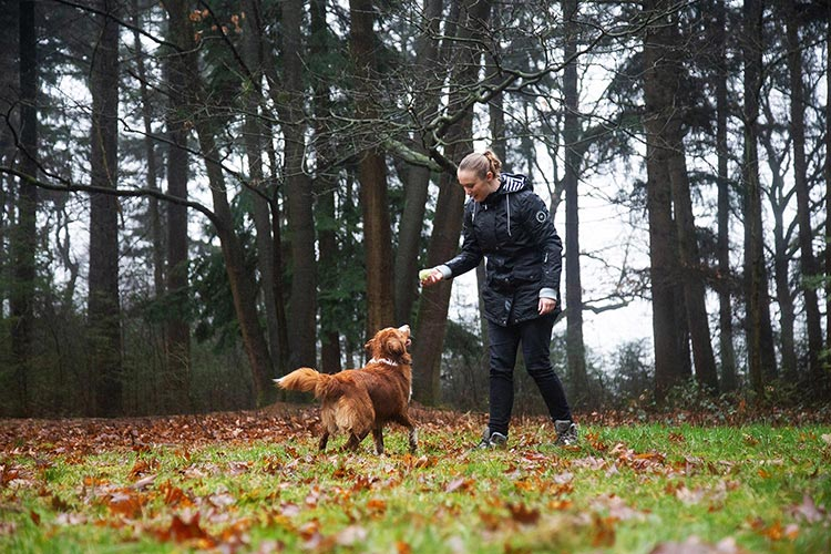 hondenuitlaatservice fotografie