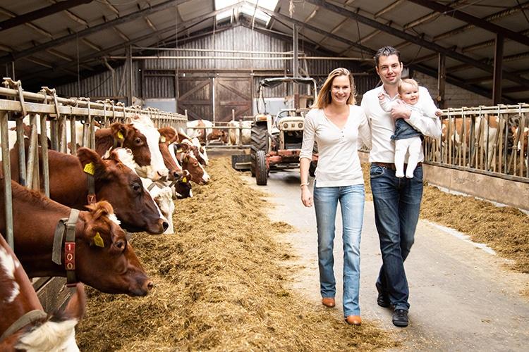 gezinsshoot locatie boerderij