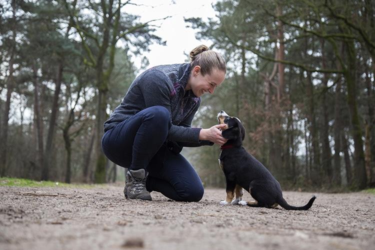Dierenfotograaf Uden