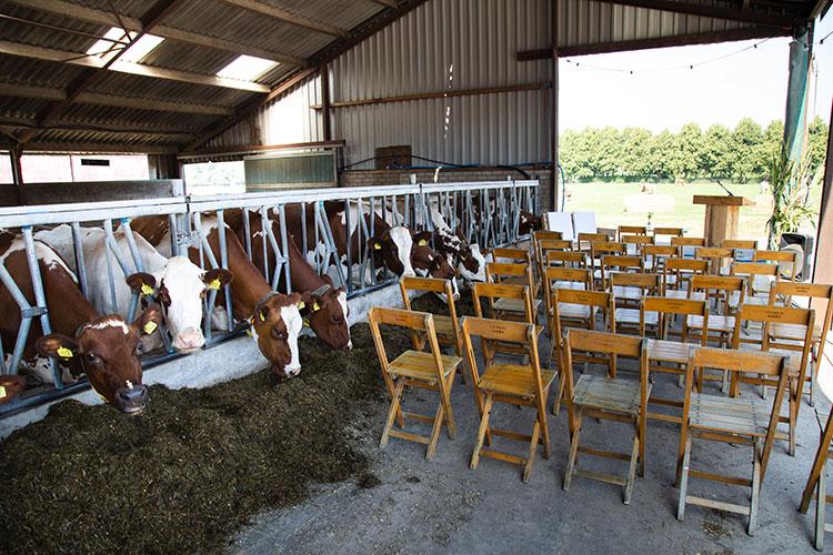 bruidslocatie op boerderij fotograaf